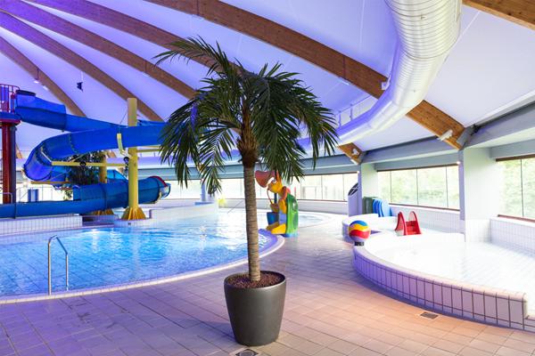 Spanplafonds voor zwembad zuiderpark for Zwembad den bosch